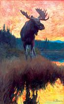Moose Against Skyline