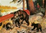 Porcupine in Camp
