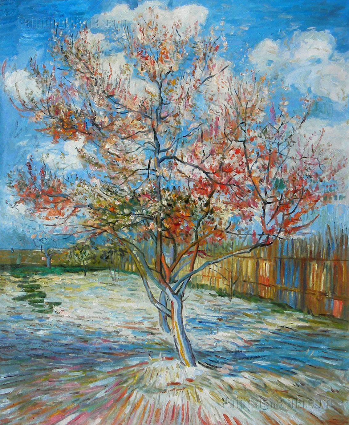 Peach Trees in Blossom (Souvenir de Mauve)