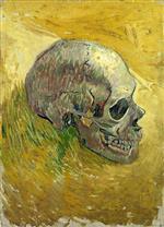 Skull 1887-88