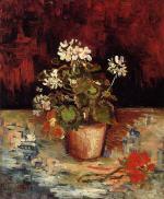 Still Life - Geranium in a Flowerpot