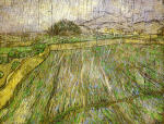 Wheat Field in Rain