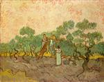 Women Picking Olives